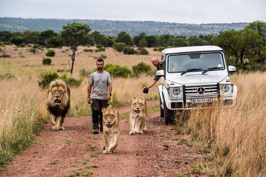 Walk with lions 13