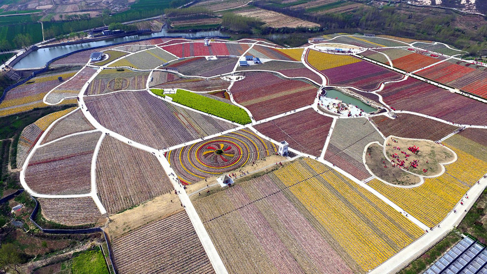 Breathtaking Aerial Views Of China's Tulip Fields 02