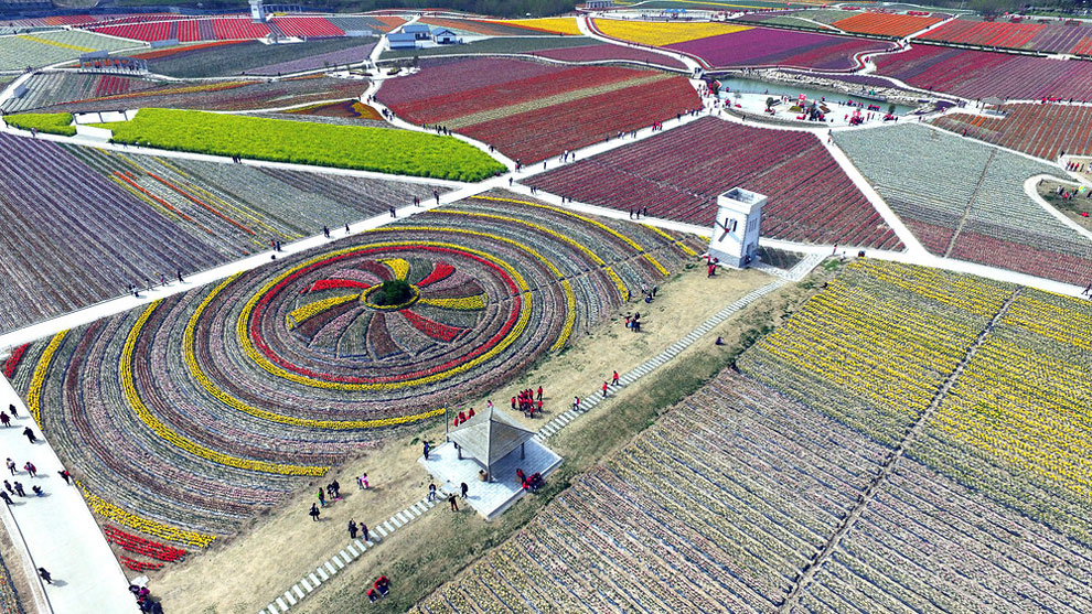 Breathtaking Aerial Views Of China's Tulip Fields 04