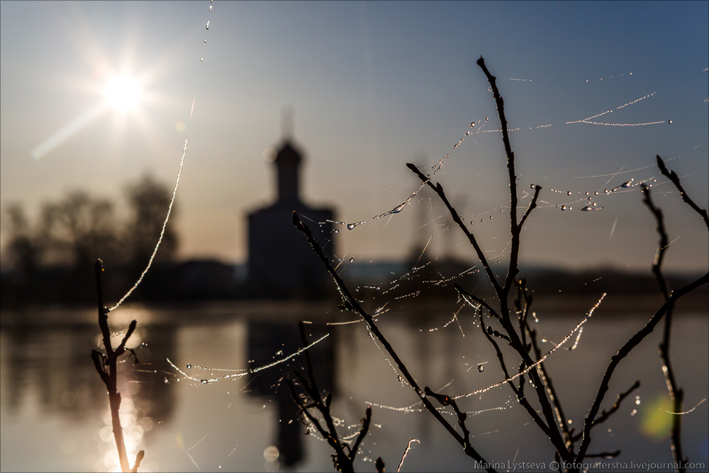 Church of the Intercession on the Nerl dawn 27