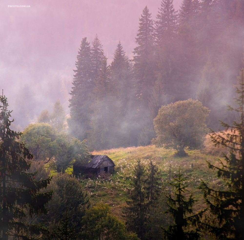 Picturesque highlands of the Carpathian mountains for an unforgettable vacation 10