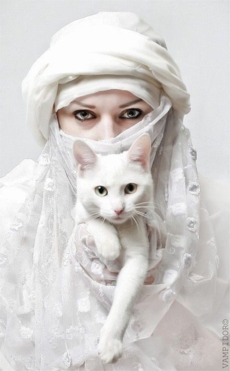 Portraits of girls with cats, like from the Renaissance 07