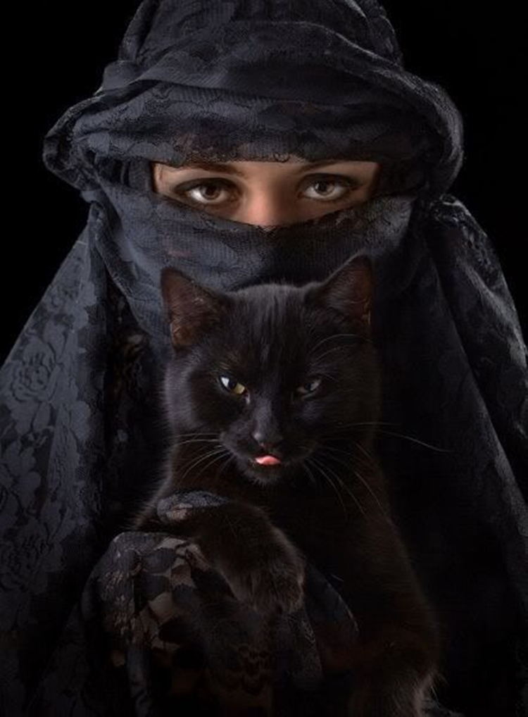 Portraits of girls with cats, like from the Renaissance 18