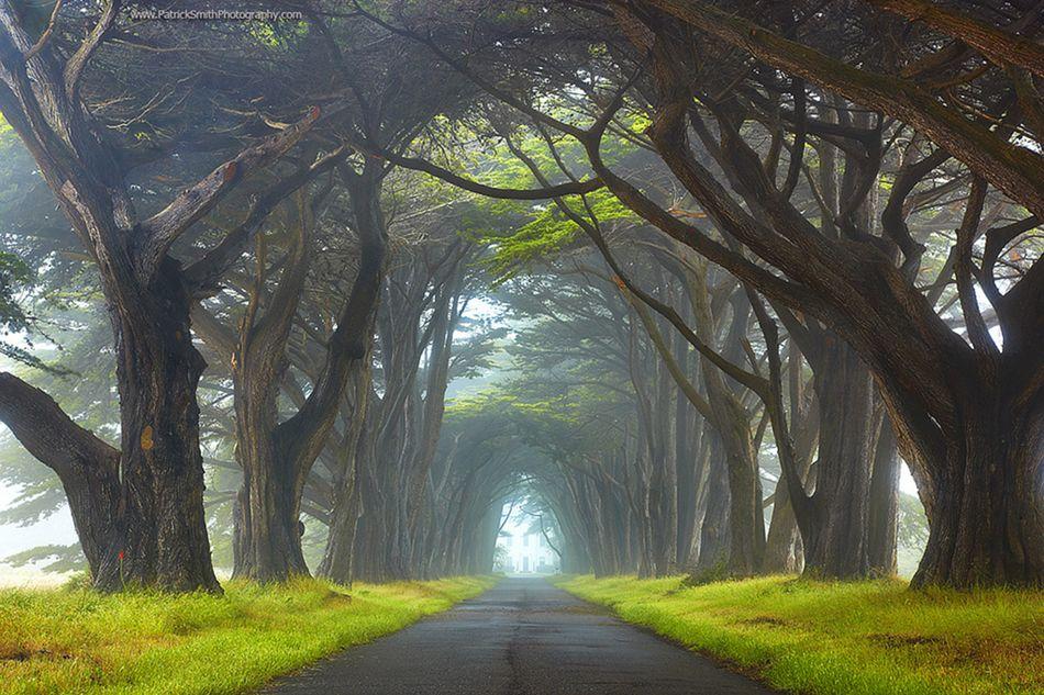 Красота природы в пейзажах