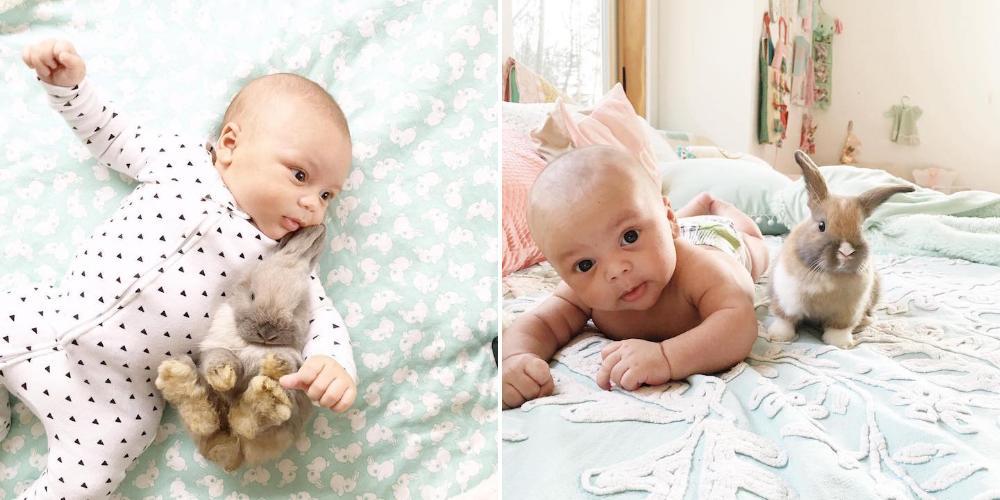 Очаровательная фотосессия дружбы малыша с кроликами, созданная мамой