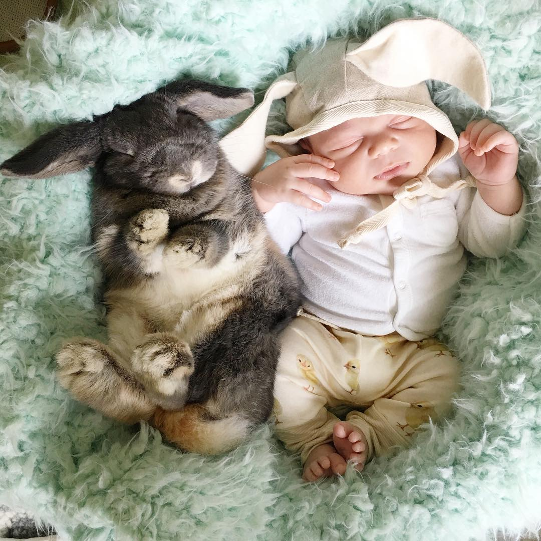 Adorable photo shoot of friendship baby with rabbits, created by the mother 02