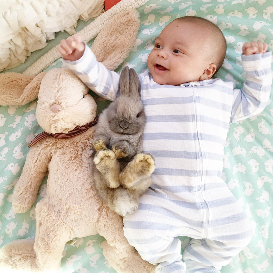 Adorable photo shoot of friendship baby with rabbits, created by the mother 04