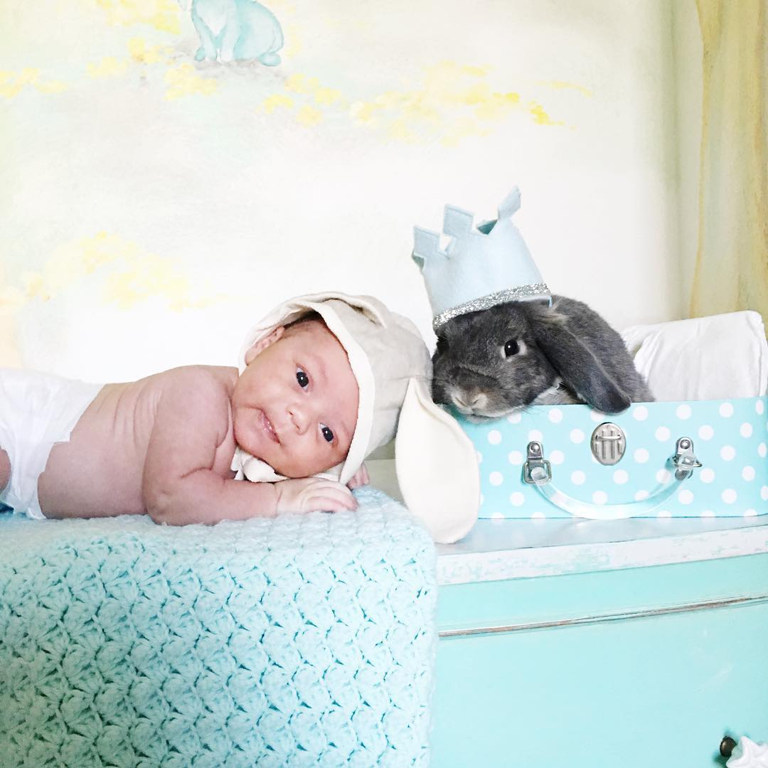 Adorable photo shoot of friendship baby with rabbits, created by the mother 06