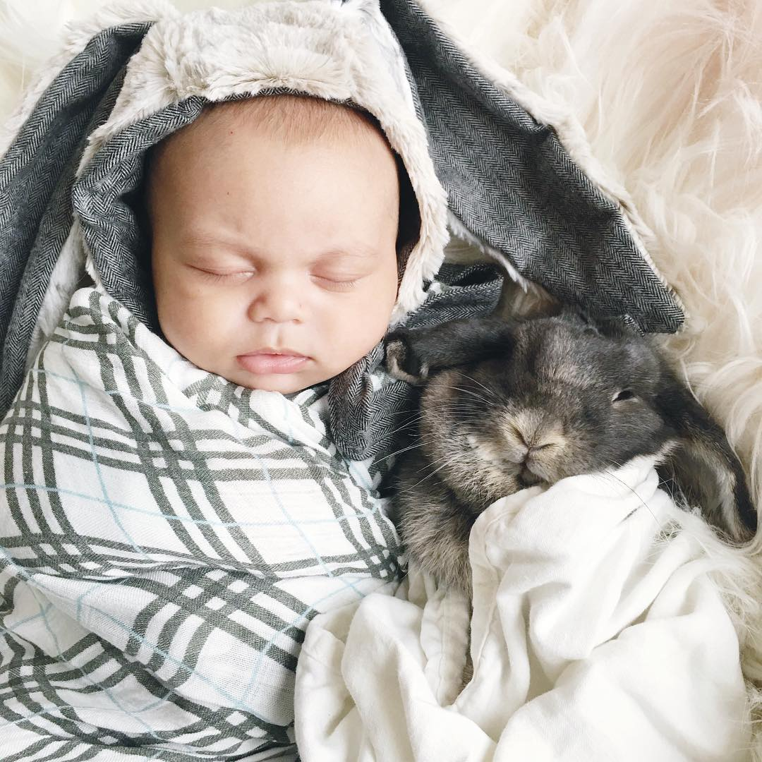 Adorable photo shoot of friendship baby with rabbits, created by the mother 07