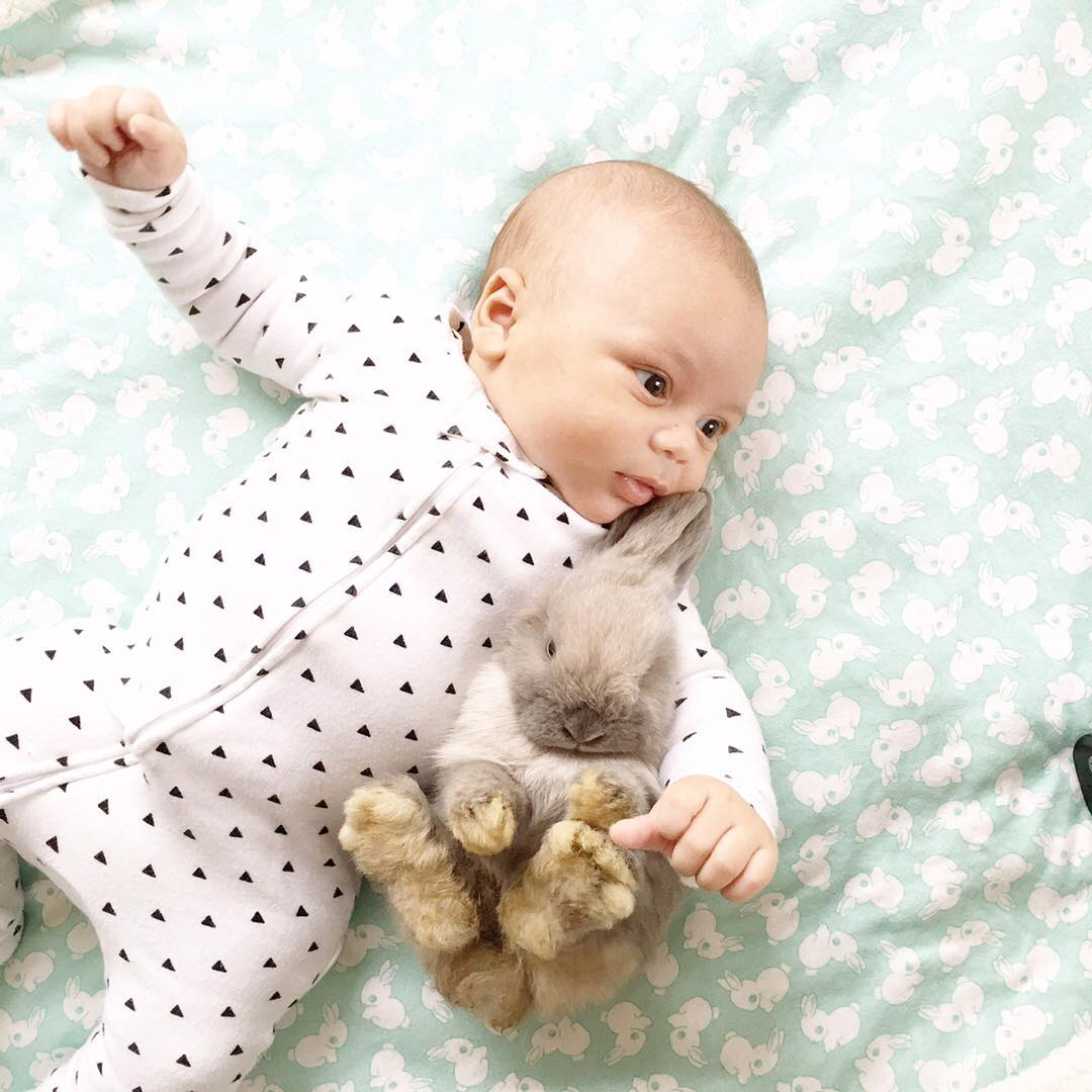 Adorable photo shoot of friendship baby with rabbits, created by the mother 08