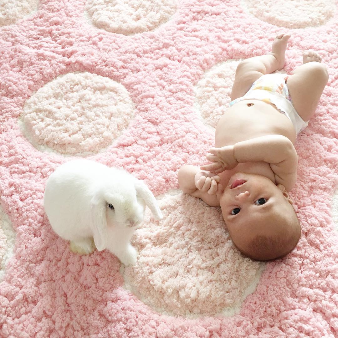 Adorable photo shoot of friendship baby with rabbits, created by the mother 10