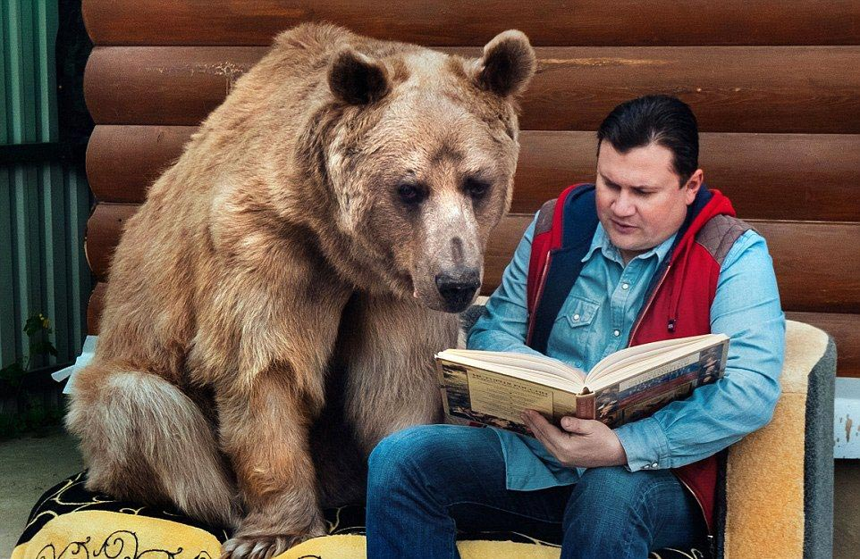 Bear Stepan and his unusual life in a Russian family 02