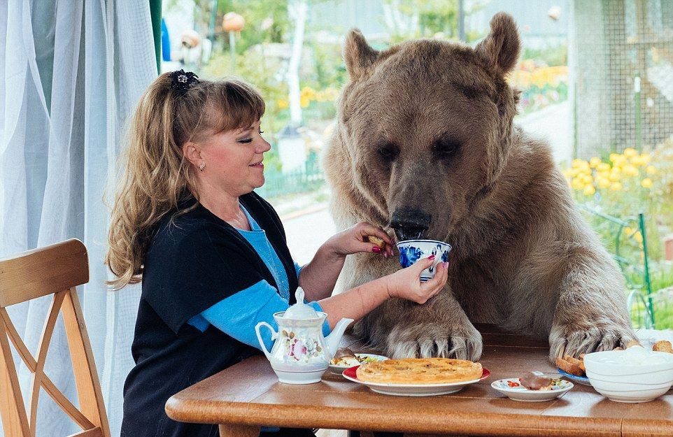 Bear Stepan and his unusual life in a Russian family 07