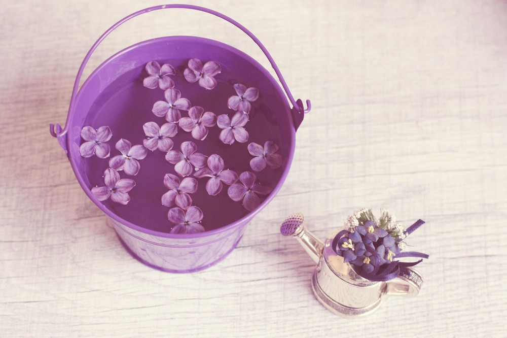 Beautiful lilacs in a still life photos 02