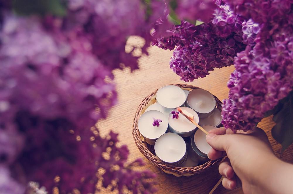 Beautiful lilacs in a still life photos 04