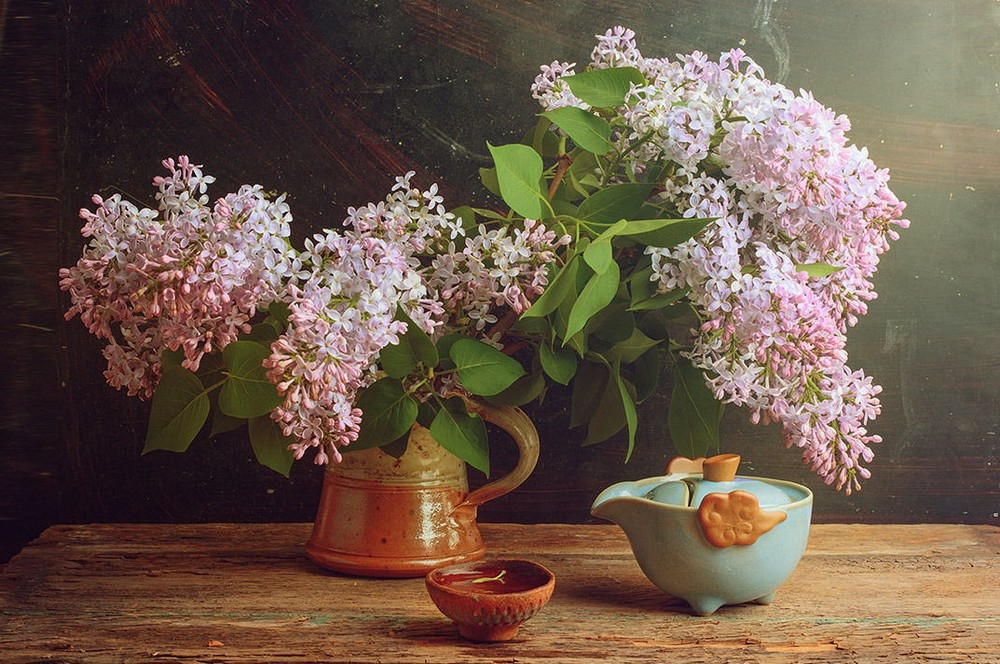 Beautiful lilacs in a still life photos 05