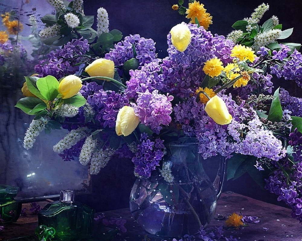 Beautiful lilacs in a still life photos 08