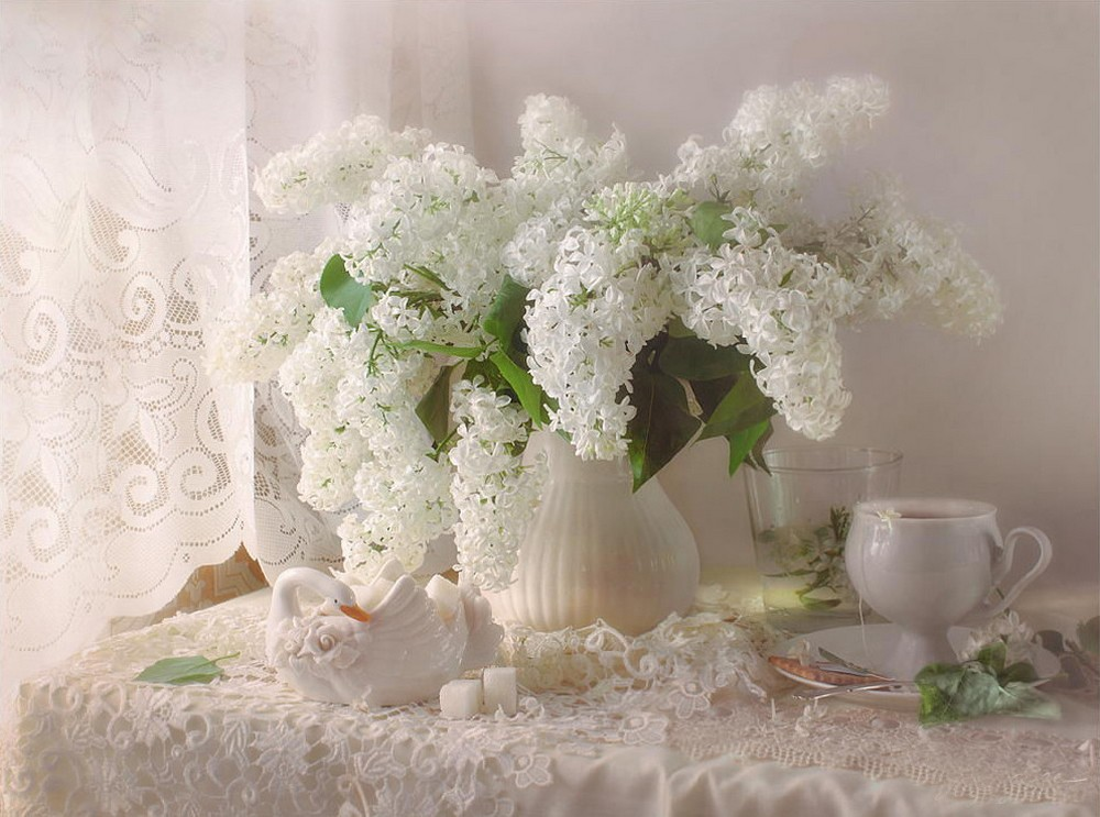 Beautiful lilacs in a still life photos 10