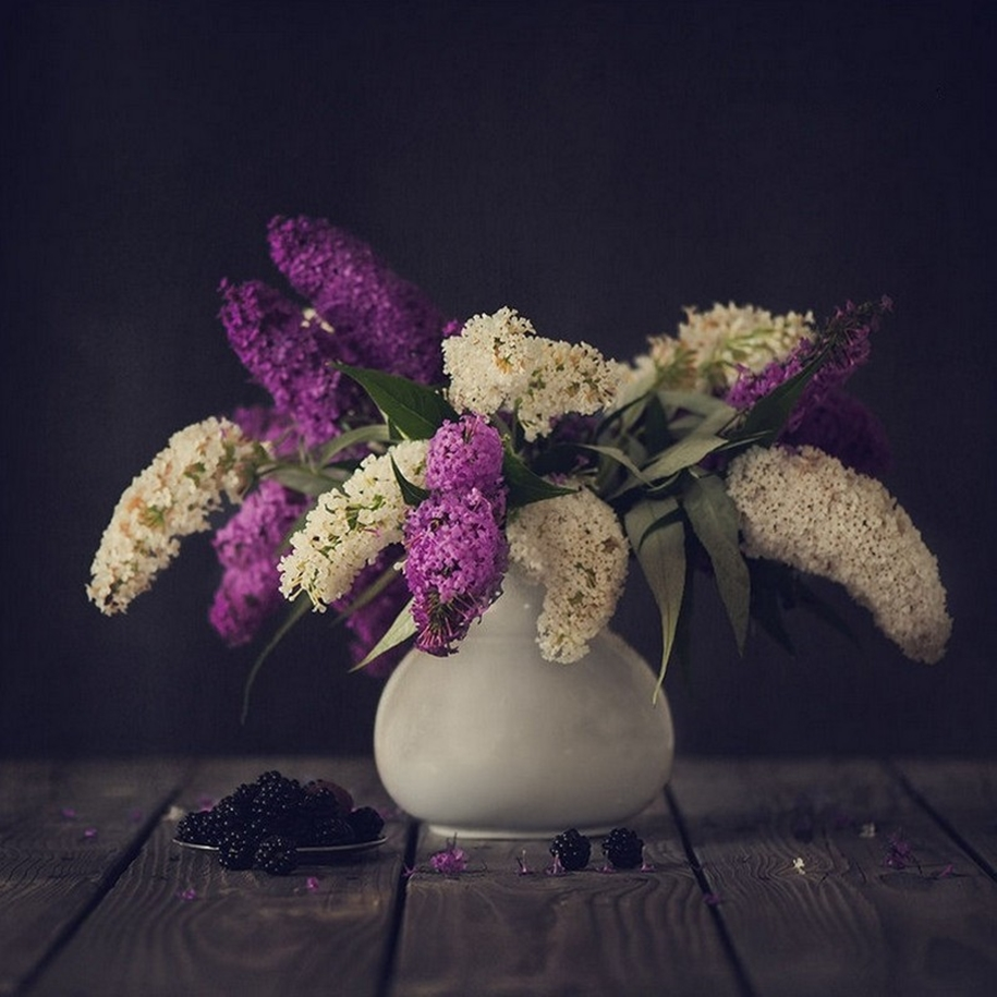 Beautiful lilacs in a still life photos 11