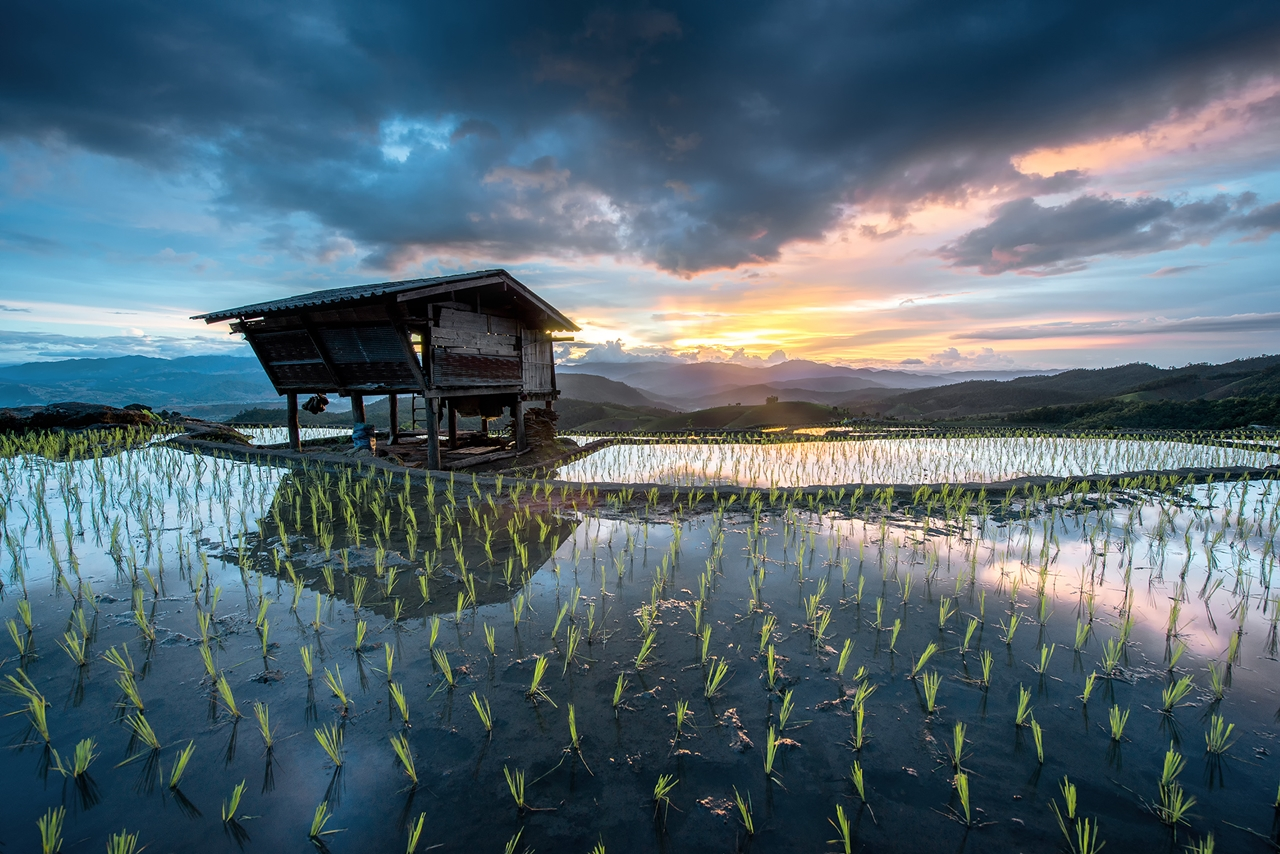Beautiful pictures from Sarawut Intarob 12