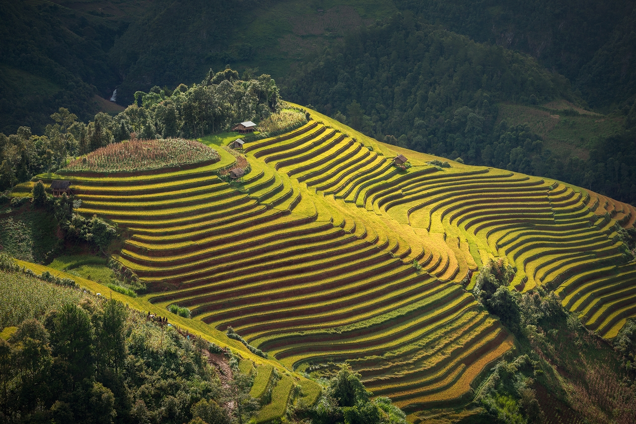 Beautiful pictures from Sarawut Intarob 16