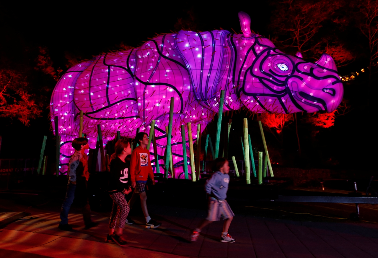 Festival of light sculptures in Sydney 07
