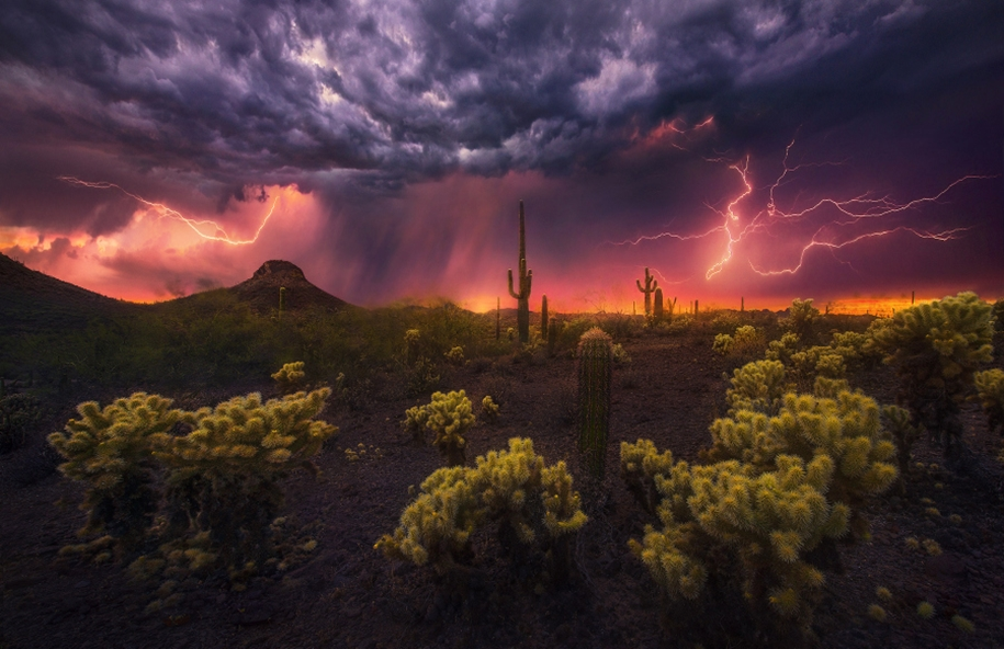 Lightning. natural energy in the lens of professional photographers 13