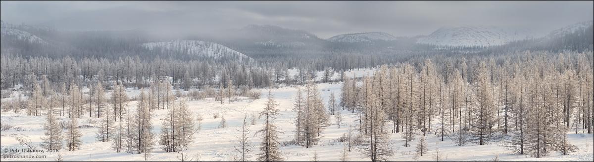 Polar Urals - a trip to the Nenets 09