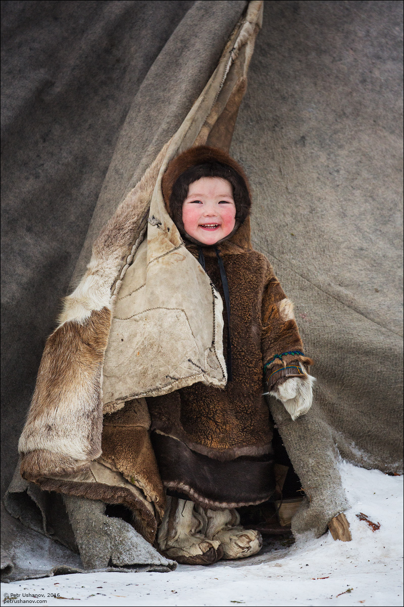 Polar Urals - a trip to the Nenets 16