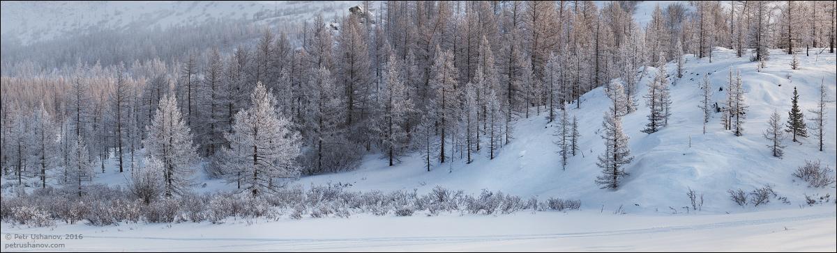 Polar Urals - a trip to the Nenets 18