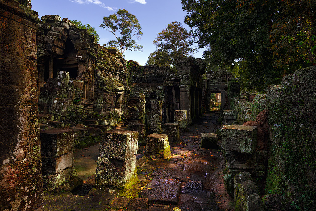 The Angkor Wat. City in the jungle 14