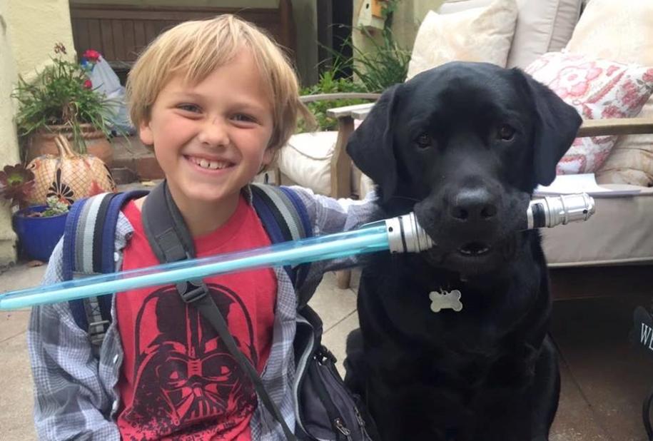 The dog - Keeper named Jedi 08
