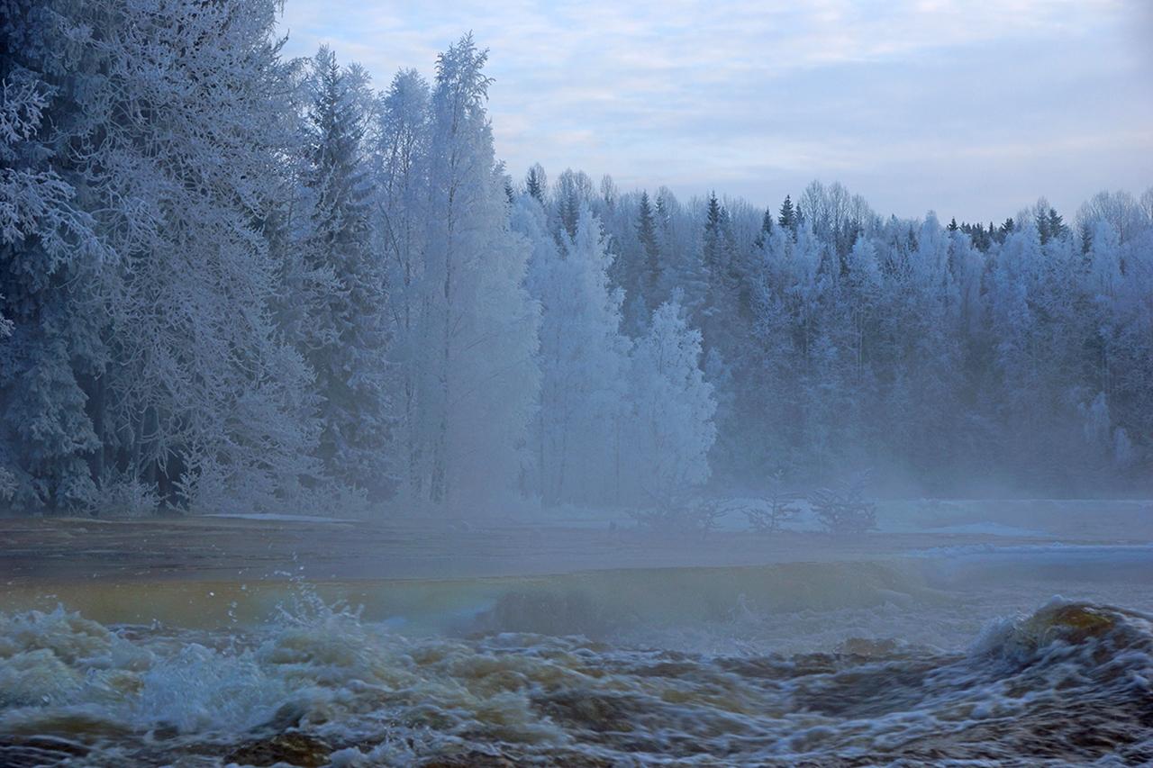 The rapids of the river Janisjoki. South Karelia 05