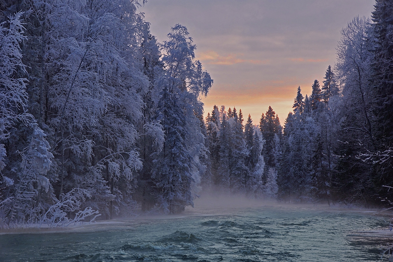 The rapids of the river Janisjoki. South Karelia 08