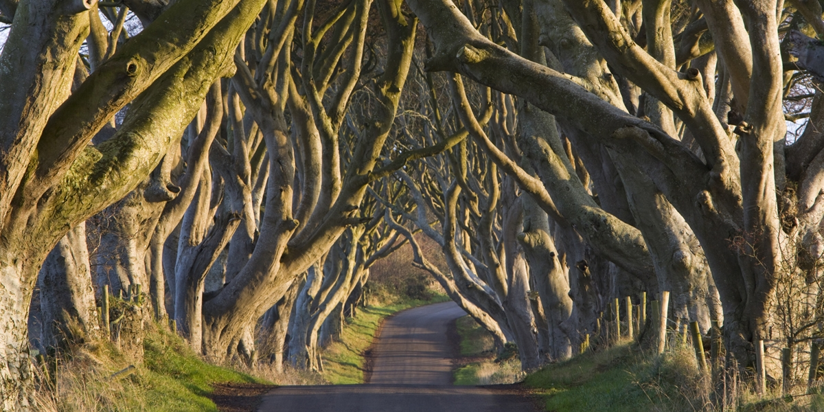 10 beautiful places originally from tales 11