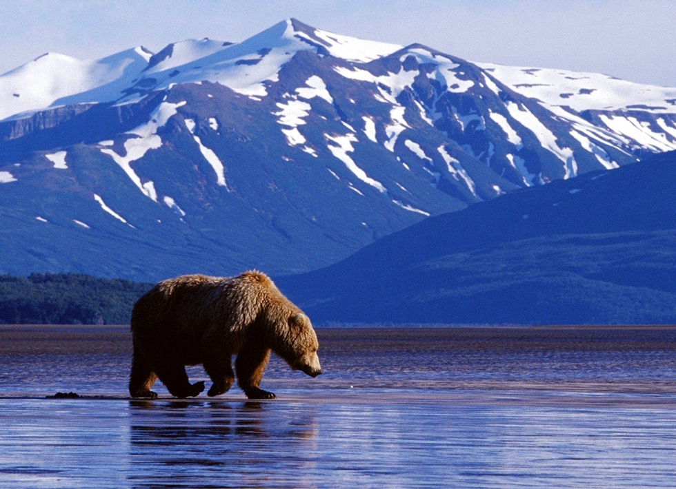 7 of the most wild places on Earth 05