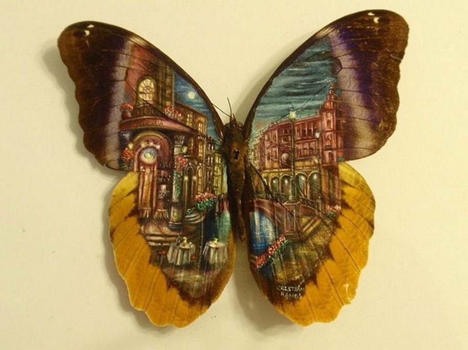 Amazing paintings on the wings of butterflies 02