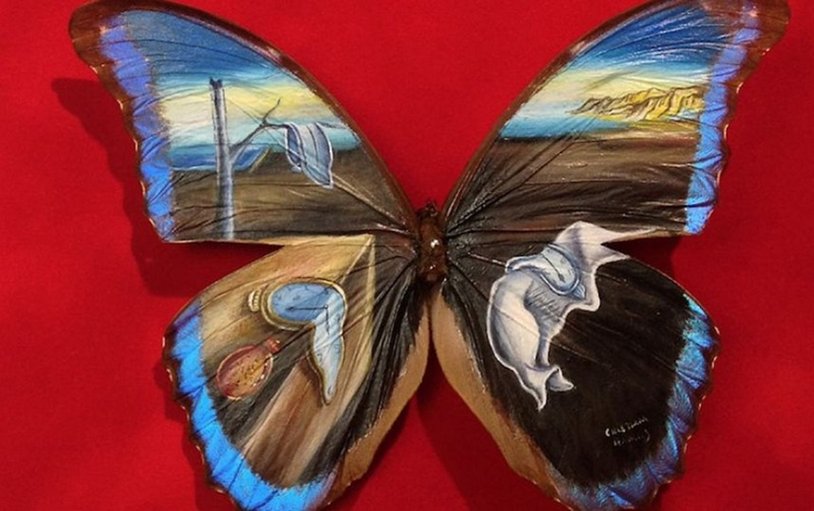 Amazing paintings on the wings of butterflies 07