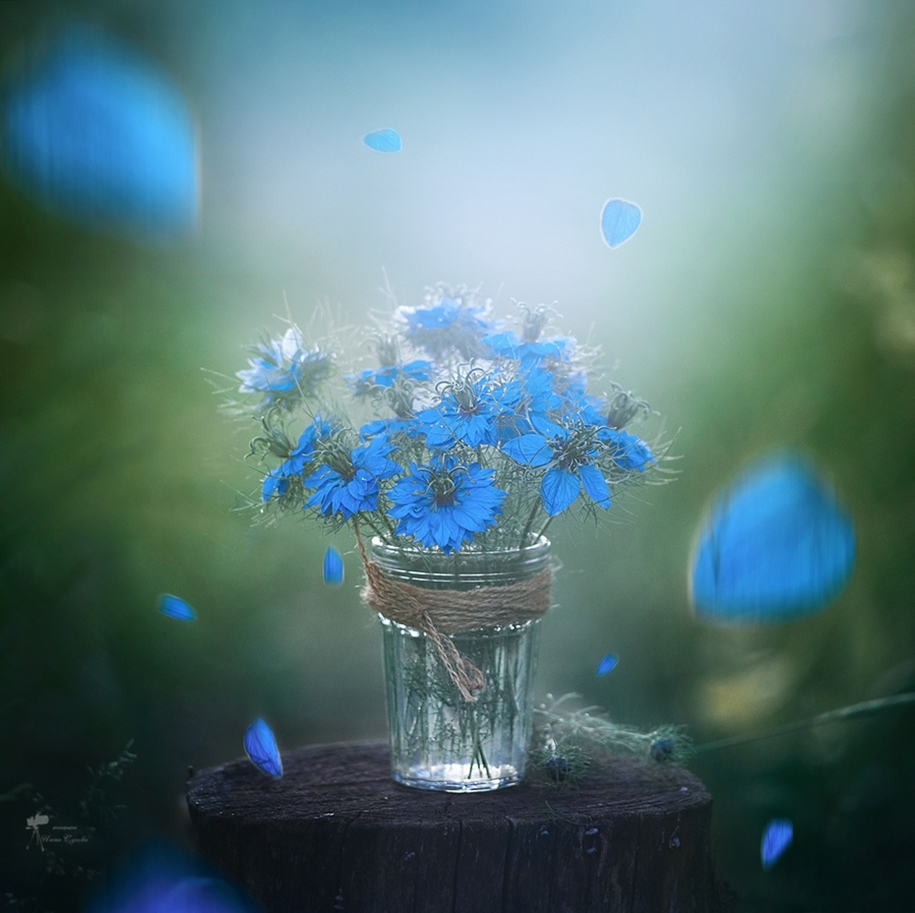 Beautiful still lifes for inspiration 02