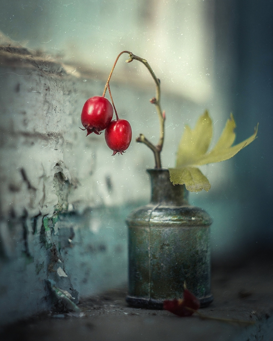 Beautiful still lifes for inspiration 07