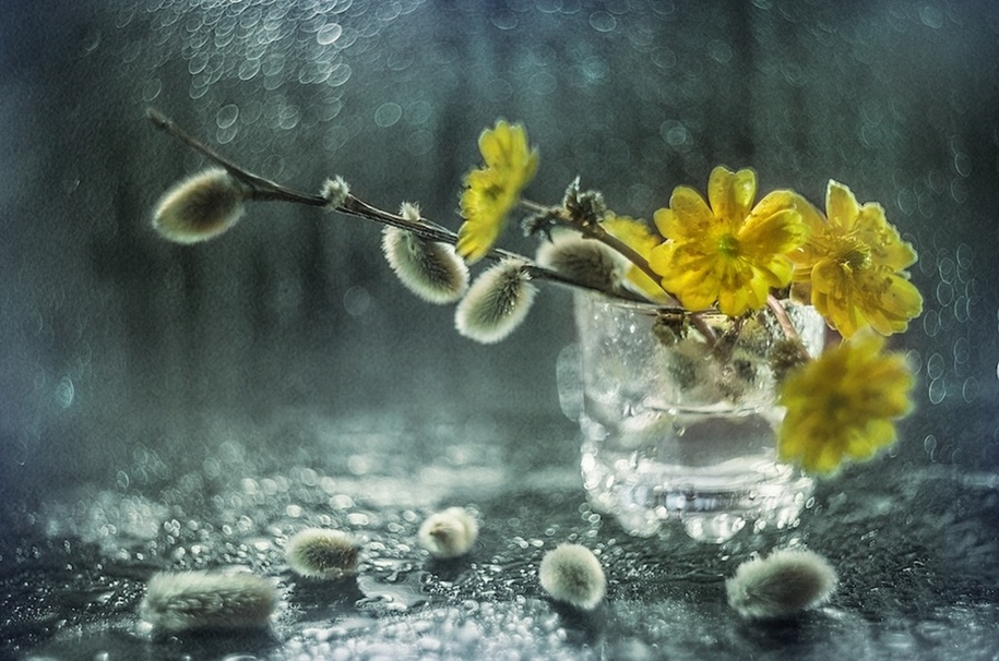Beautiful still lifes for inspiration 21