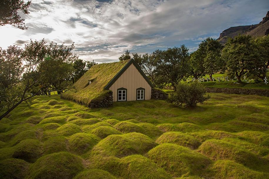 Сказочная красота скандинавских домов с зелеными крышами
