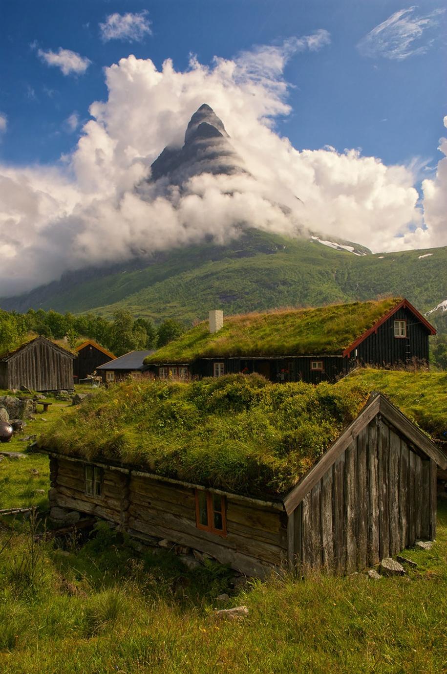Fabulous beauty Scandinavian homes with green roofs 04