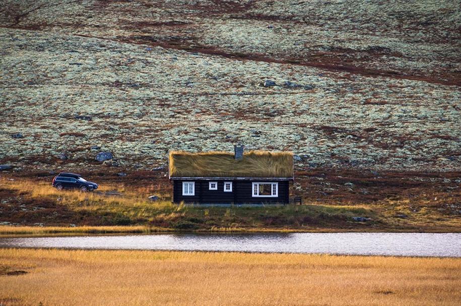 Fabulous beauty Scandinavian homes with green roofs 21