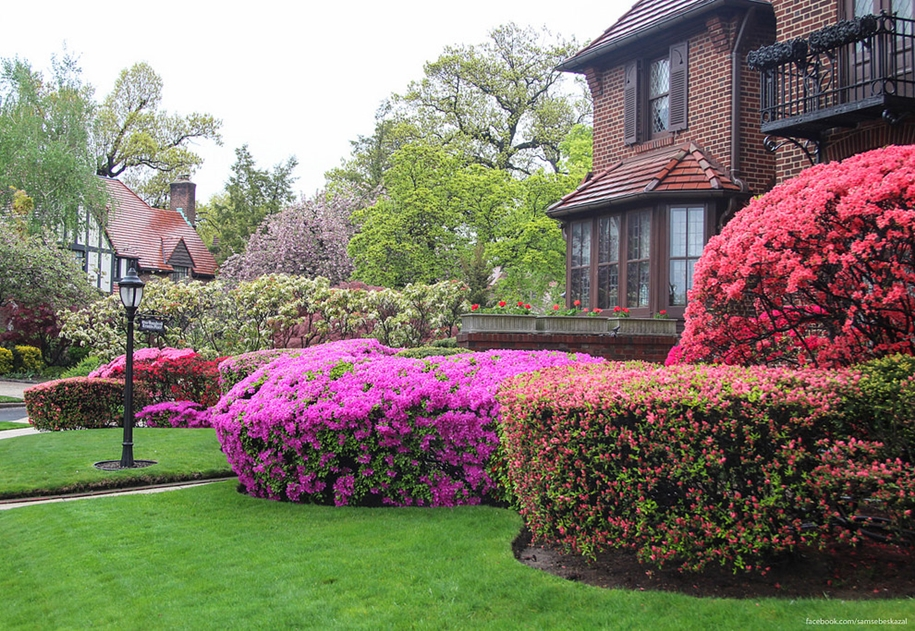 Forest hills gardens is one of the best areas of new York 09
