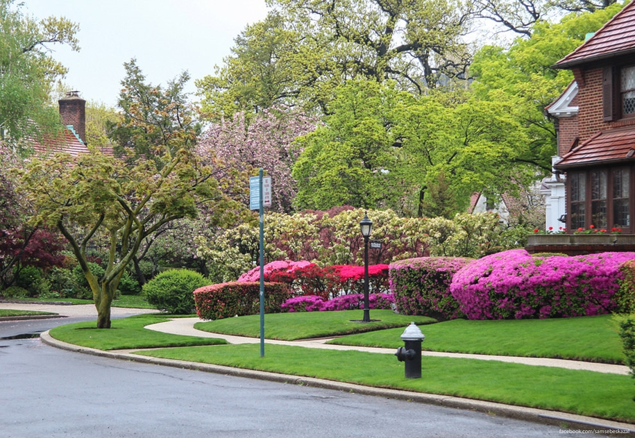 Forest hills gardens is one of the best areas of new York 29