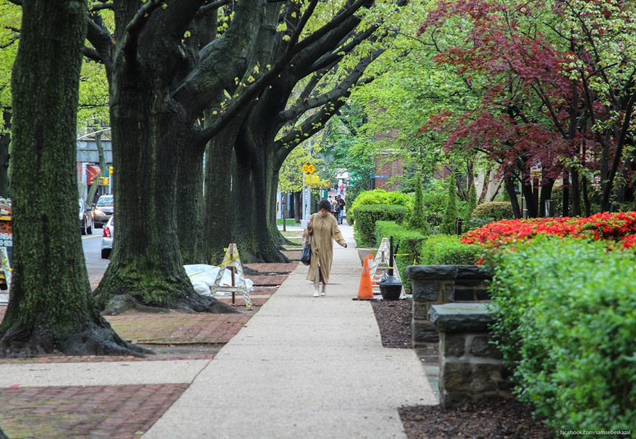 Forest hills gardens is one of the best areas of new York 37