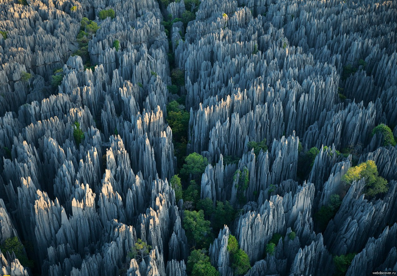 It's worth seeing with your own eyes! Stone forest of Tsingy 01