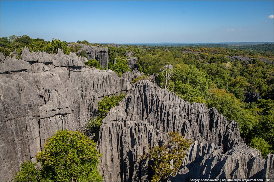 It's worth seeing with your own eyes! Stone forest of Tsingy 11