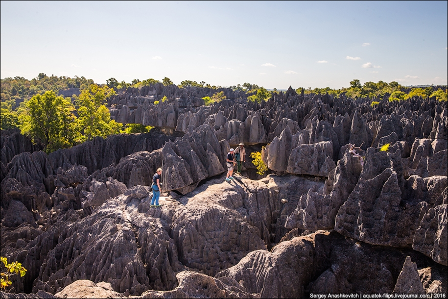 It's worth seeing with your own eyes! Stone forest of Tsingy 12